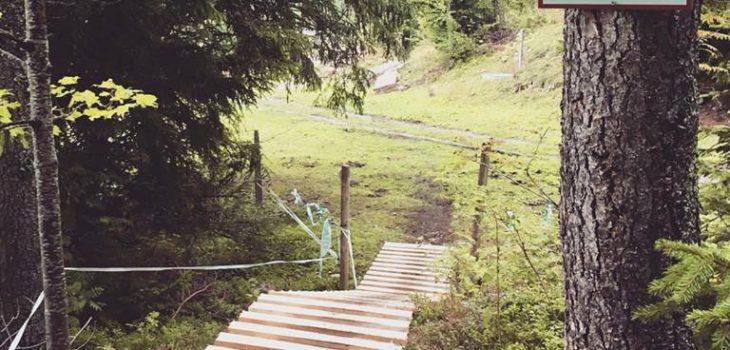 Leysin-Bike-Park-northshore-2