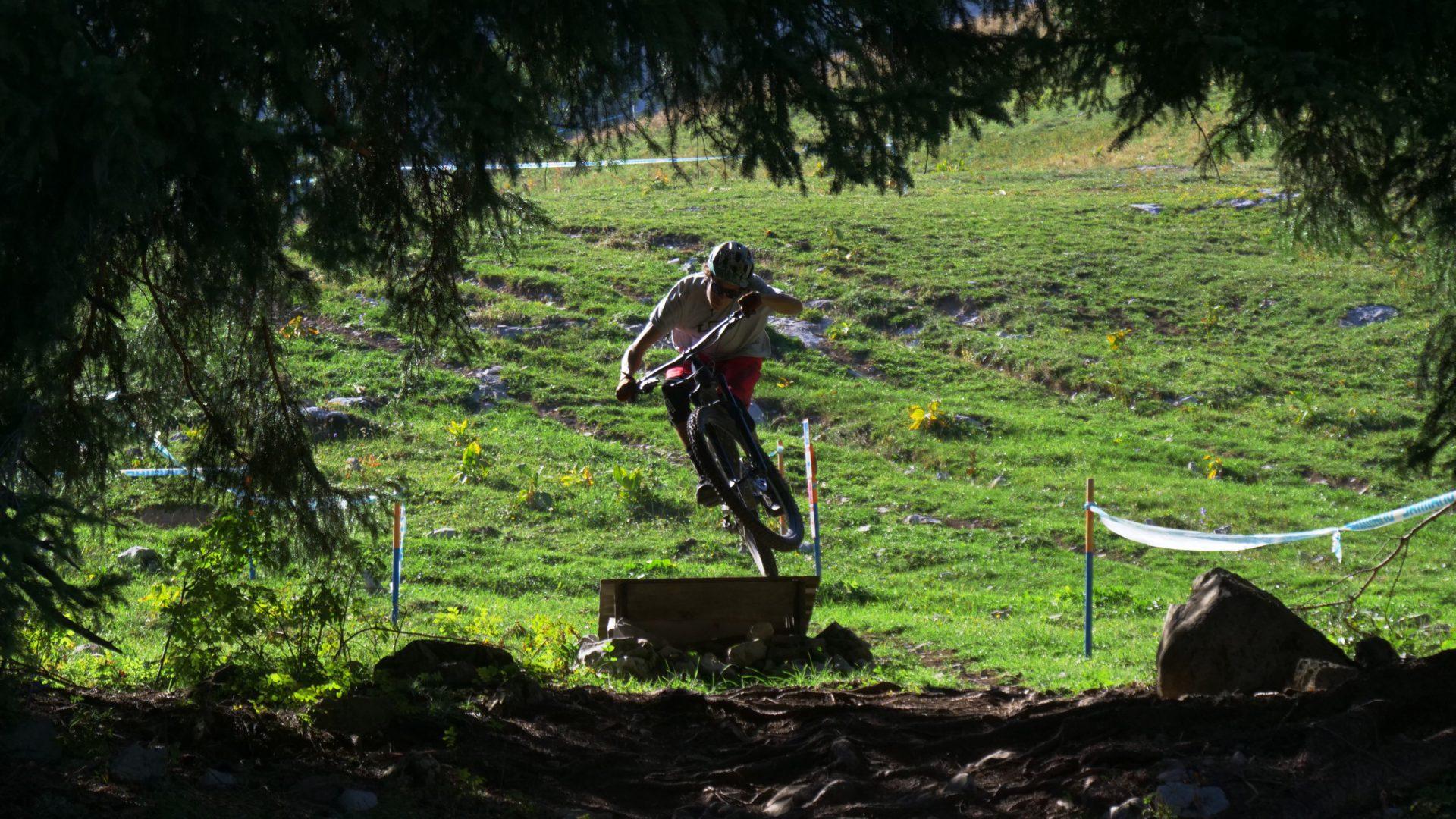 Leysin-Bike-Park-Jouxdai-woods
